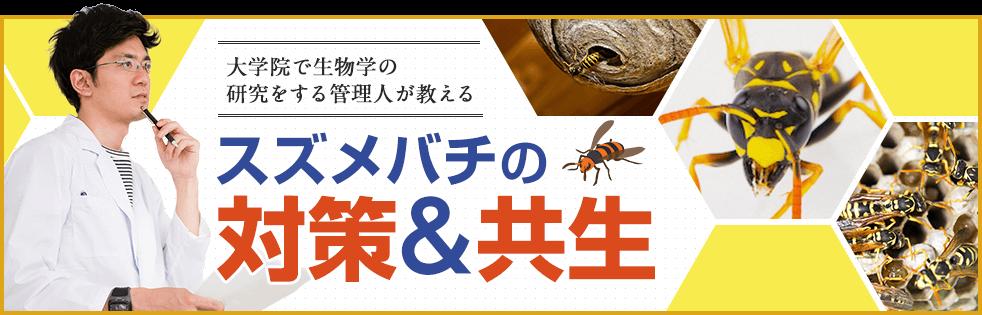 スズメバチの対策と共生教えます